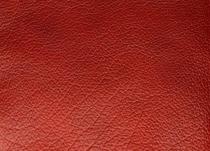 Bufalo-Rosso