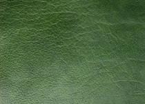 Bufalo-Verde