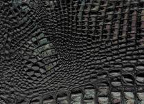 Cocco Conchiglia-Nero