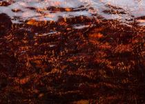Cerbero 582 Goccia-Bruciato