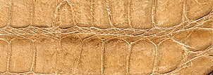 Line. Vack Effect Art. Cocco Jordan-2902